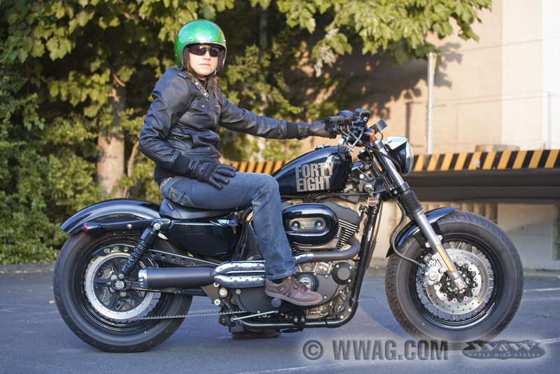 Cache Courroie Harley Davidson Sportster